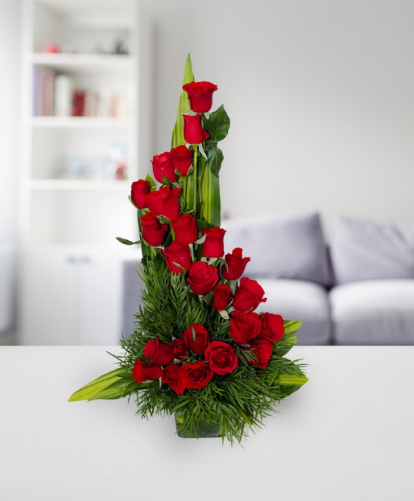 OSA01 36 red roses
