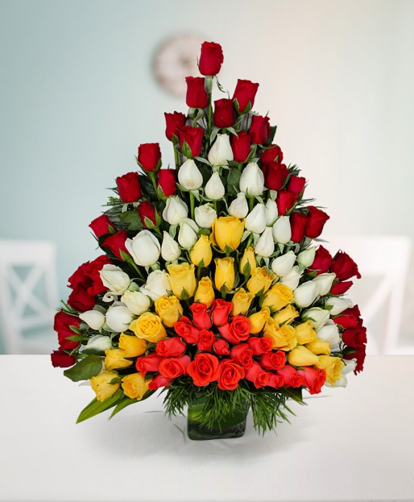 OSA04 100 Rose